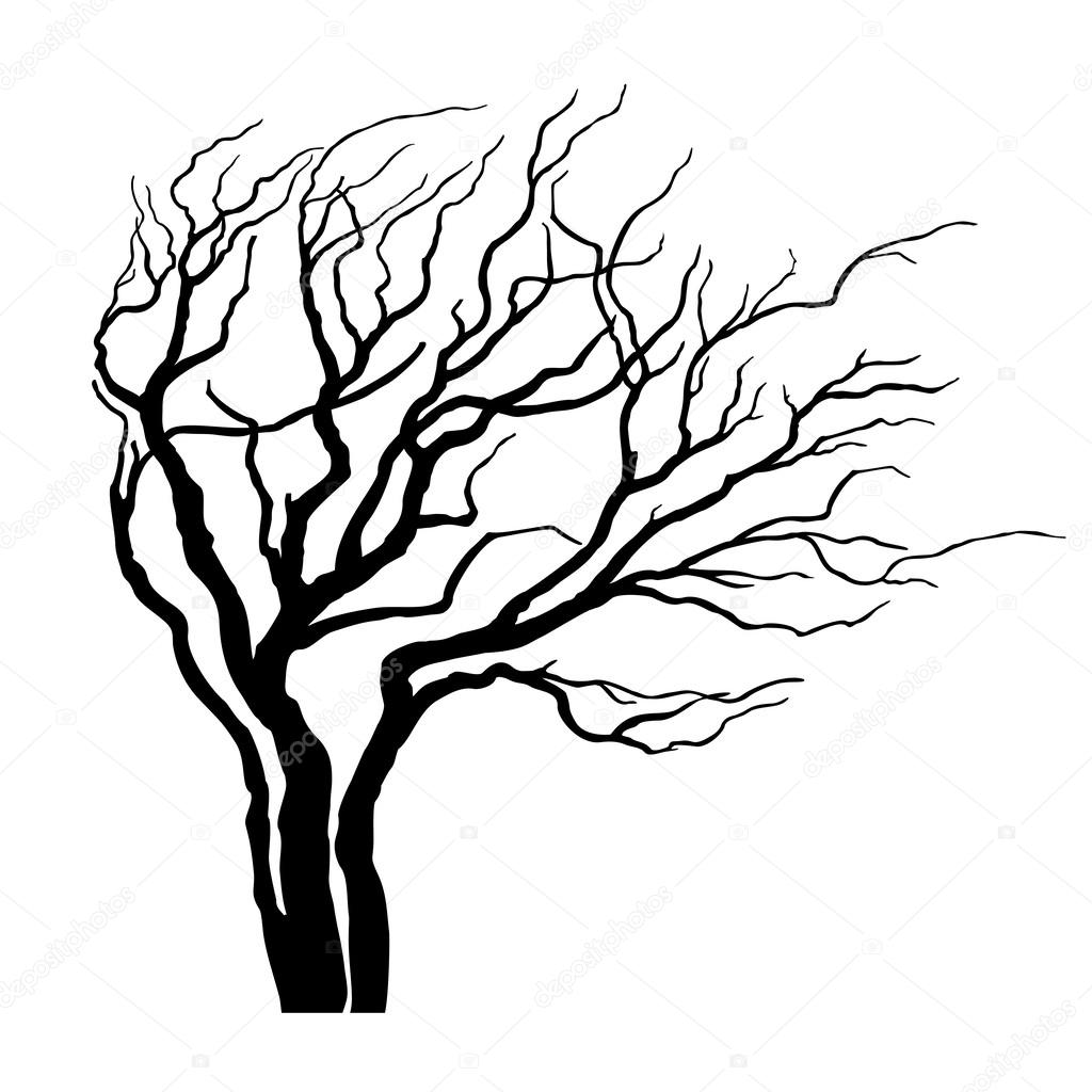 1024x1024 Vector Tree With Branches In The Wind Stock Vector Loca