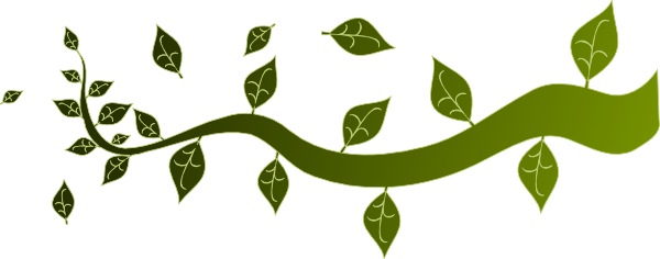 600x236 Clipart Tree With Branches