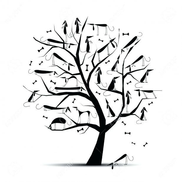 618x618 Branch Clipart Tree Three