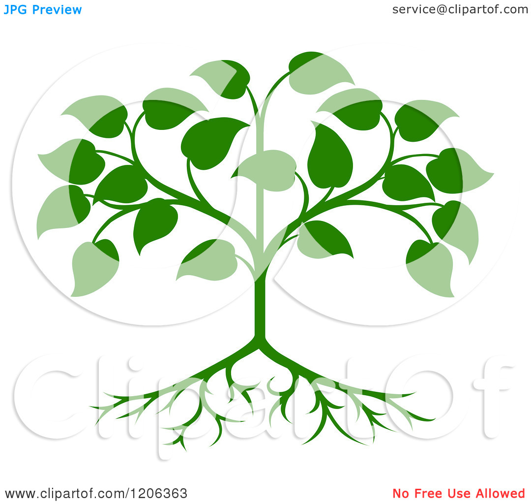 Best Tree Template No Leaves Pictures Inspiration - Entry Level ...