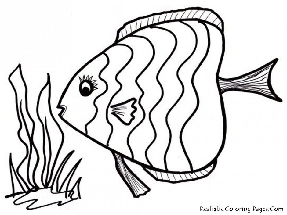 940x705 Realistic Fish Coloring Pages