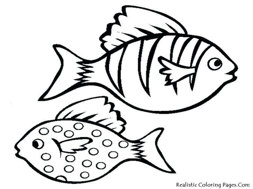 878x659 Cartoon Fish Drawings Free Printable Coloring Pages 16 Fascinating