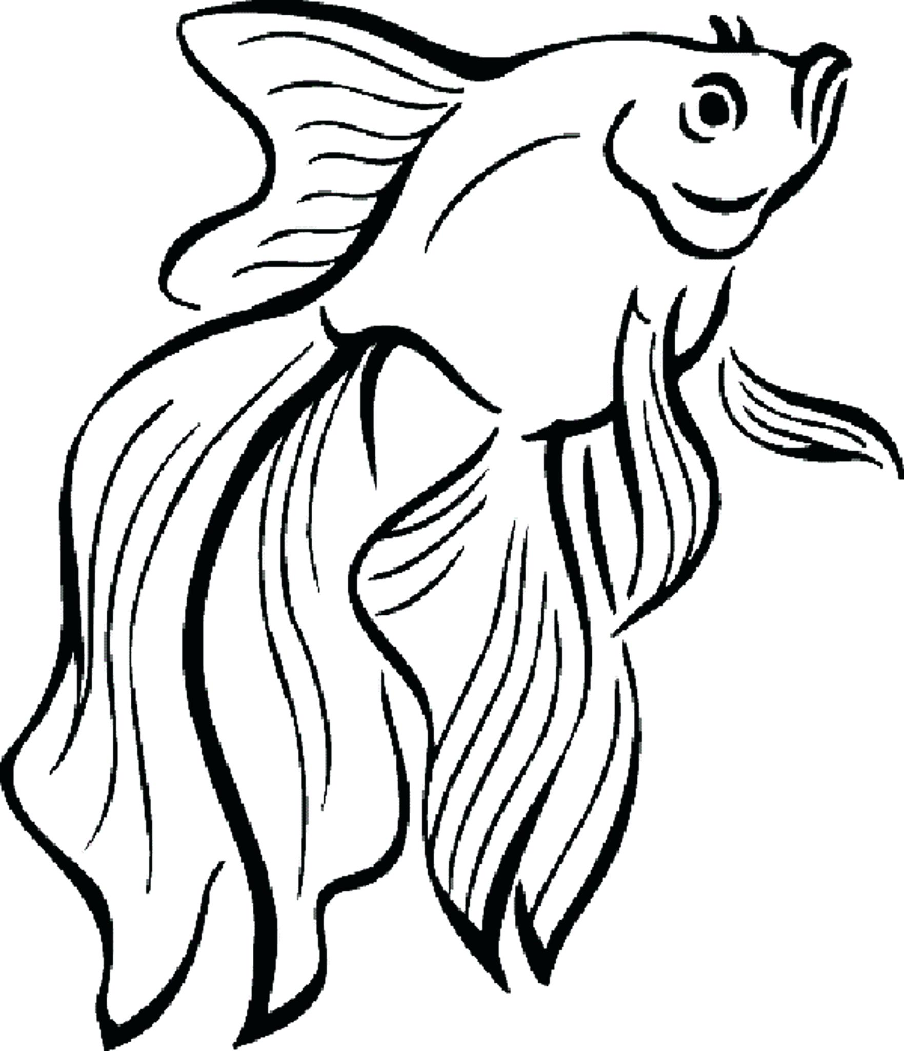 Tropical Fish Coloring Pages Free Download Best