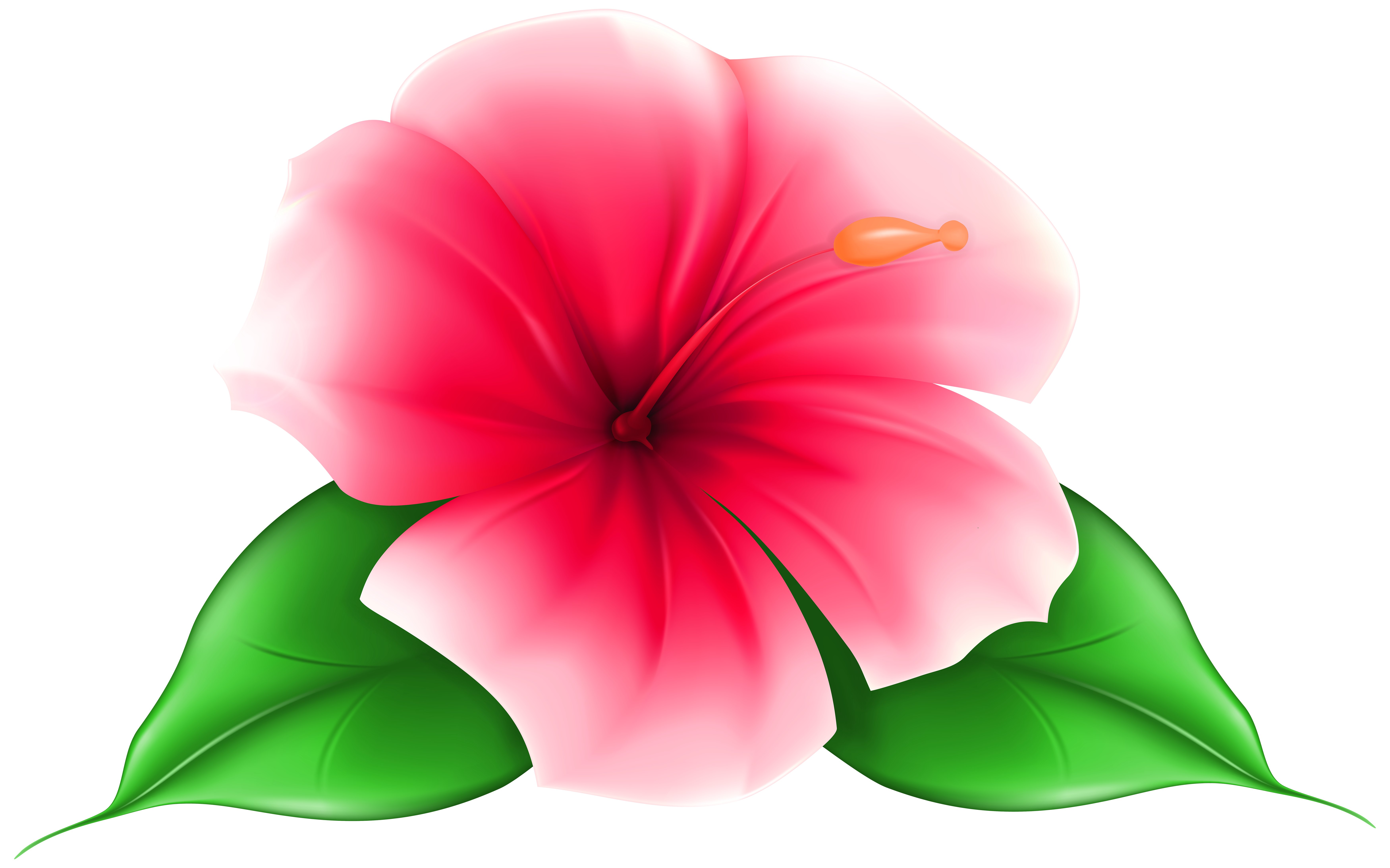 Tropical Flowers Clipart | Free download on ClipArtMag