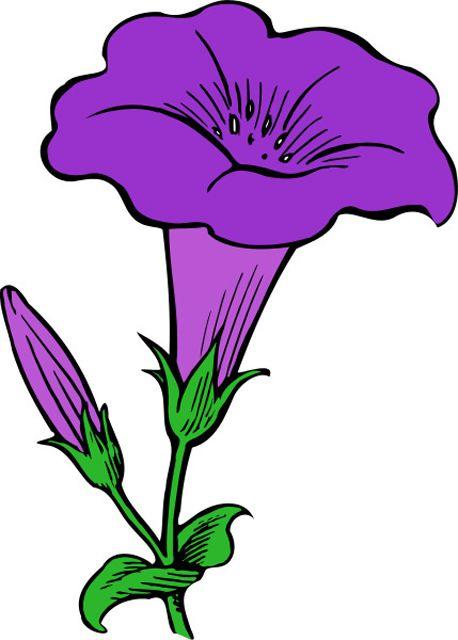 458x640 Trumpet Flowers Clipart