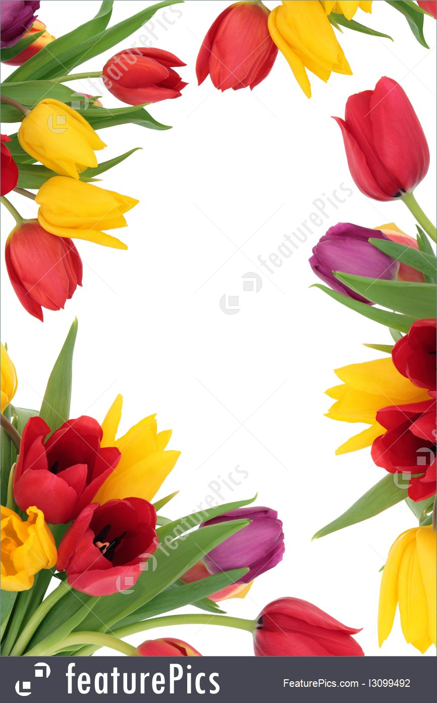 866x1392 Templates Tulip Flower Border