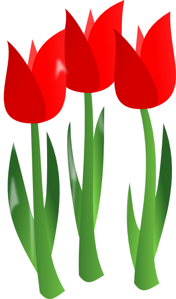 348x592 Red Tulips Clip Art