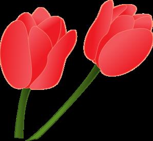 298x276 Top 56 Tulip Clip Art