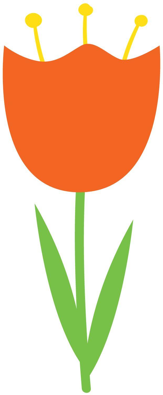 621x1500 Tulip Clipart Orange