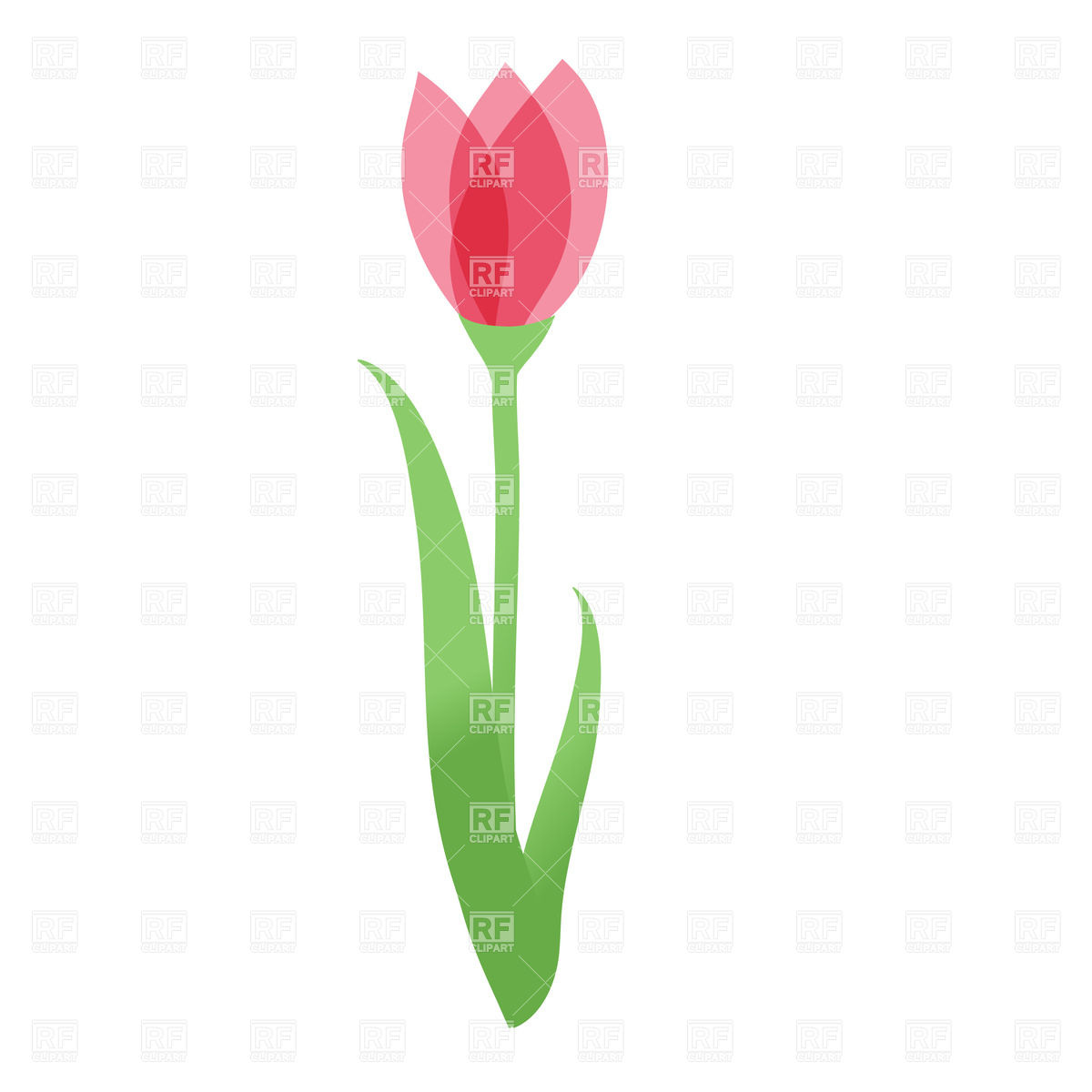 1200x1200 Tulip flower Royalty Free Vector Clip Art Image