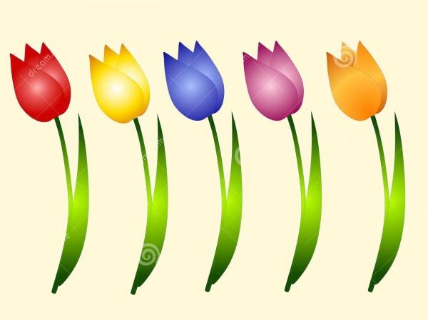 Tulip Clipart Border