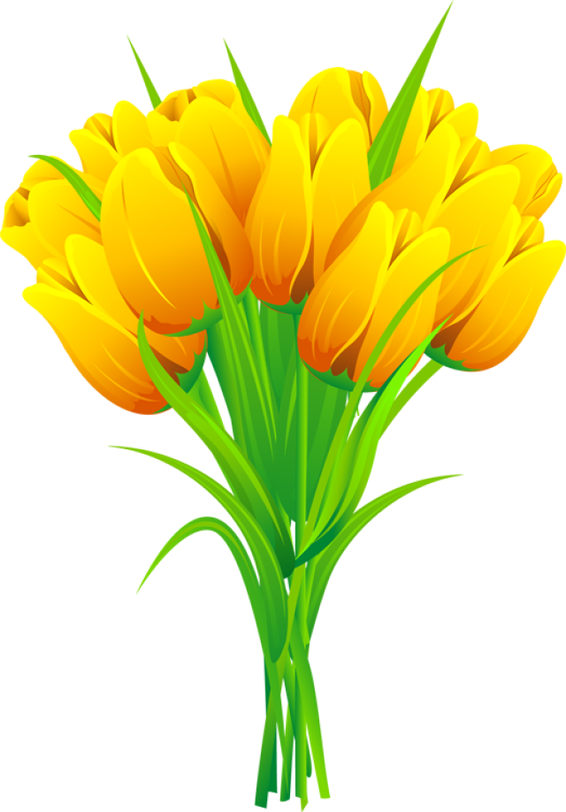 640x918 Pink And Yellow Tulip Clip Art Clipart