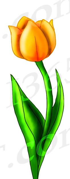 246x623 50% Off Tulip Clipart Tulip Clip Art Tulips Scrapbooking