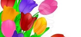 272x125 Spring Flower Backgrounds Clipart Collection On Flower Clip Art