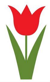 167x271 Top 57 Tulip Clip Art