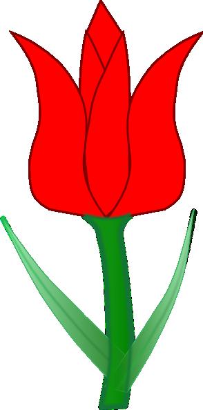 294x594 Tulip Clipart 4 Image