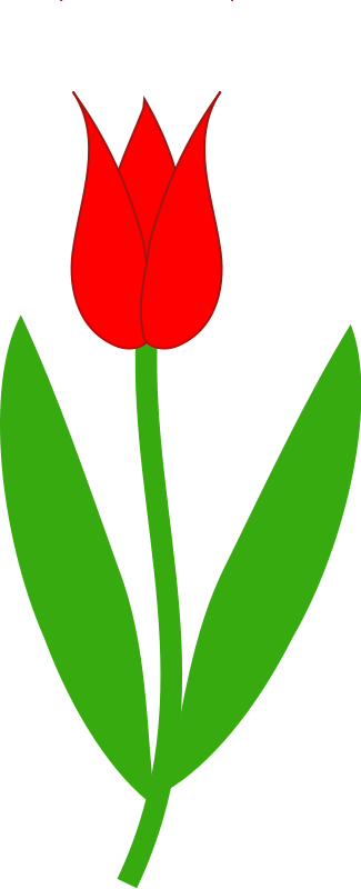 325x800 Tulip Clipart Black And White Free Clipart Images Image