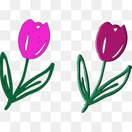 260x260 Purple Tulips, Tulips, Thanksgiving Png And Vector For Free Download