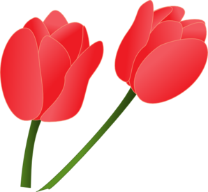298x276 Tulip Clip Art Cliparts