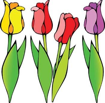 350x341 Tulip Clipart Tulip Flower