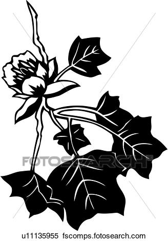 328x470 Clipart Of , Autumn, Fall, Leaf, Leaves, Seasons, Tulip Tree