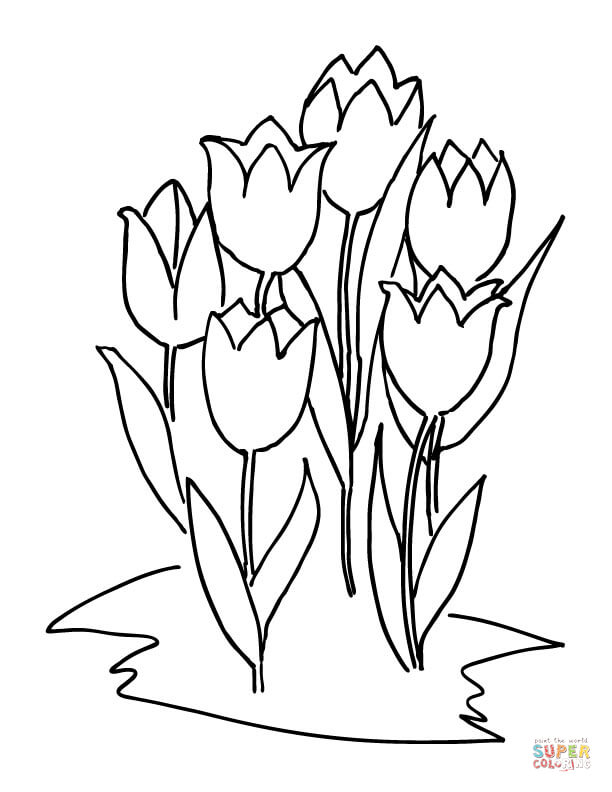 612x792 Six Tulips Coloring Page Free Printable Coloring Pages
