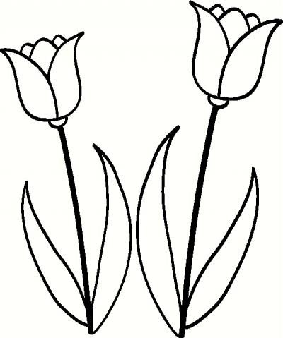 400x479 Tulip Set Wall Sticker, Vinyl Decal The Wall Works
