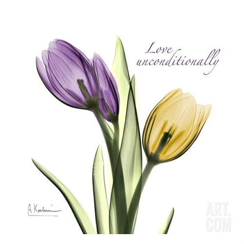 500x500 Purple Tulip Flowers Tattoo Ideas With Meaning