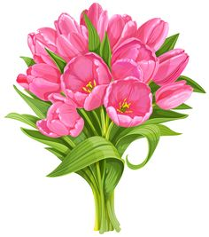 236x267 Clipart Picturesflowers Png