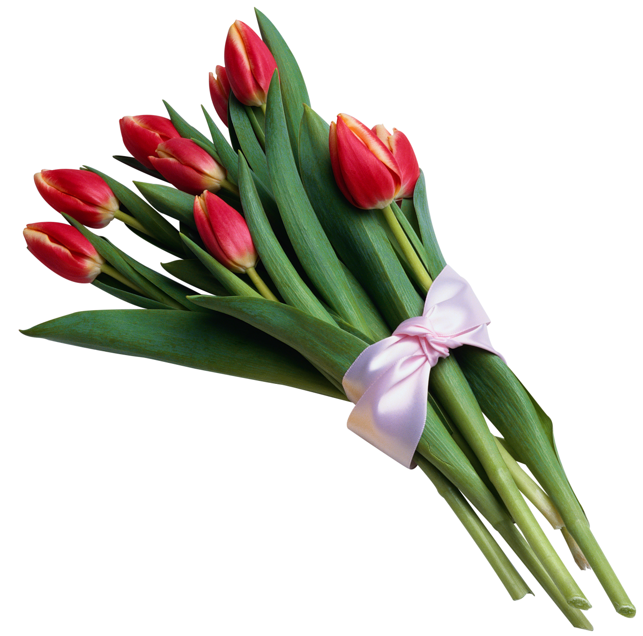 1320x1304 Bouquet Clipart Tulip Bouquet