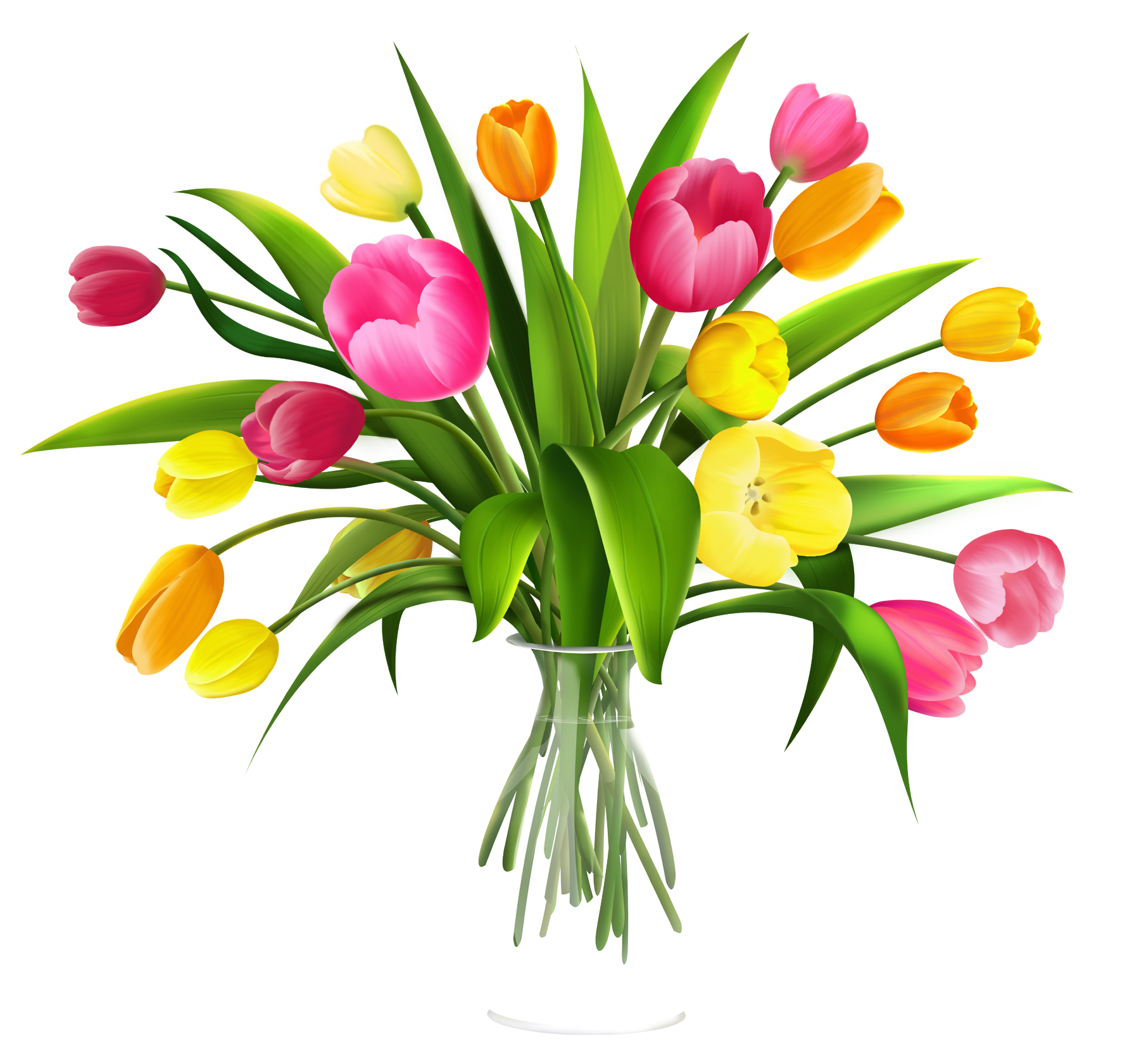 1780x1681 Bouquet Of Tulips Clipart