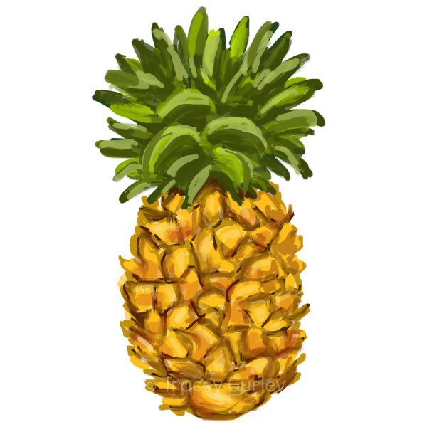 600x600 Pineapple Black And White Ideas About Pineapple Drawing On Step By