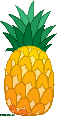 240x489 Pineapple Clipart Pixel