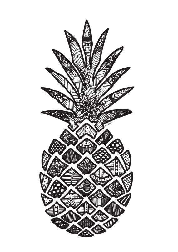 570x806 The Best Pineapple Drawing Ideas Pineapple