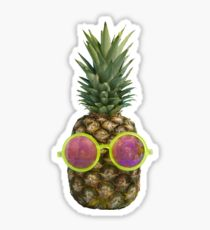 210x230 Tumblr Pineapple Photography Stickers Redbubble