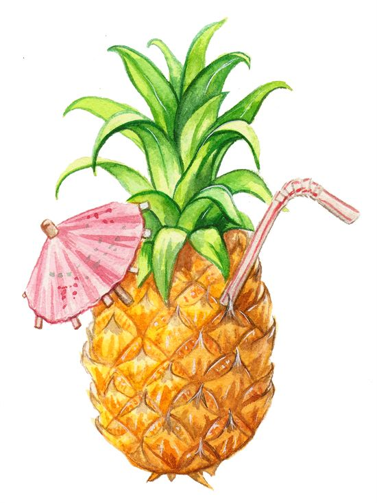 550x732 Best Pineapple Illustration Ideas Pineapple
