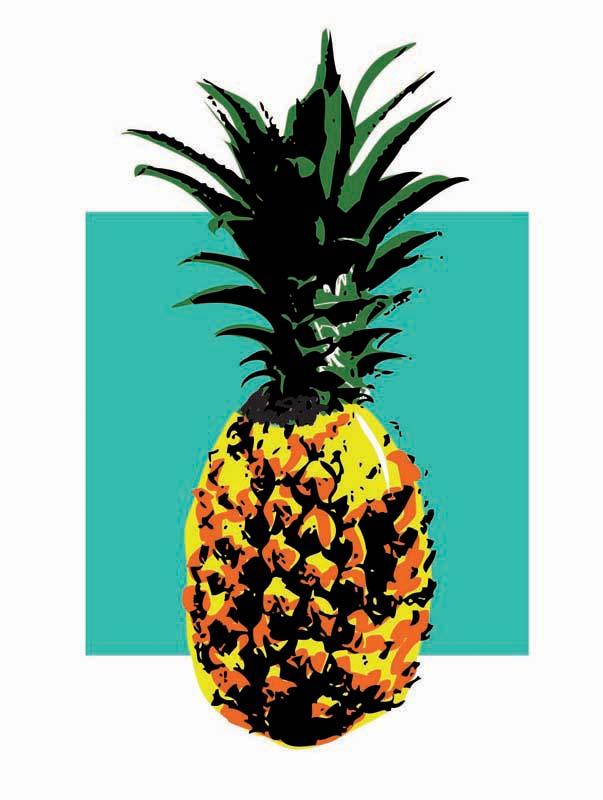 603x800 Pineapple By Kophte