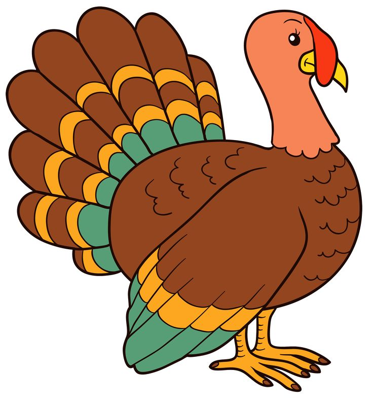 Turkey Body Clipart