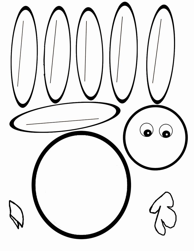 Turkey Feathers Clipart   Free download best Turkey Feathers Clipart ...