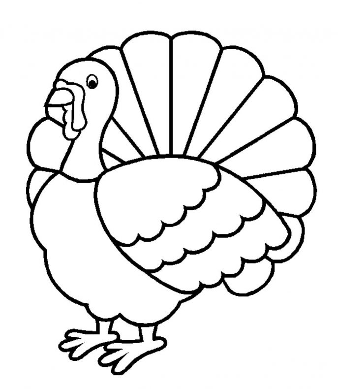 687x790 Coloring Pages A Turkey For Thanksgiving Coloring Pages