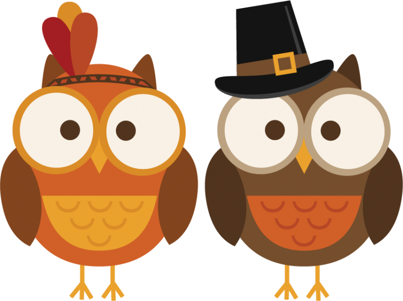 800x599 Turkey Owl Clipart