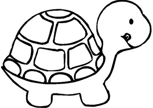 500x353 Turtle Clipart Black And White