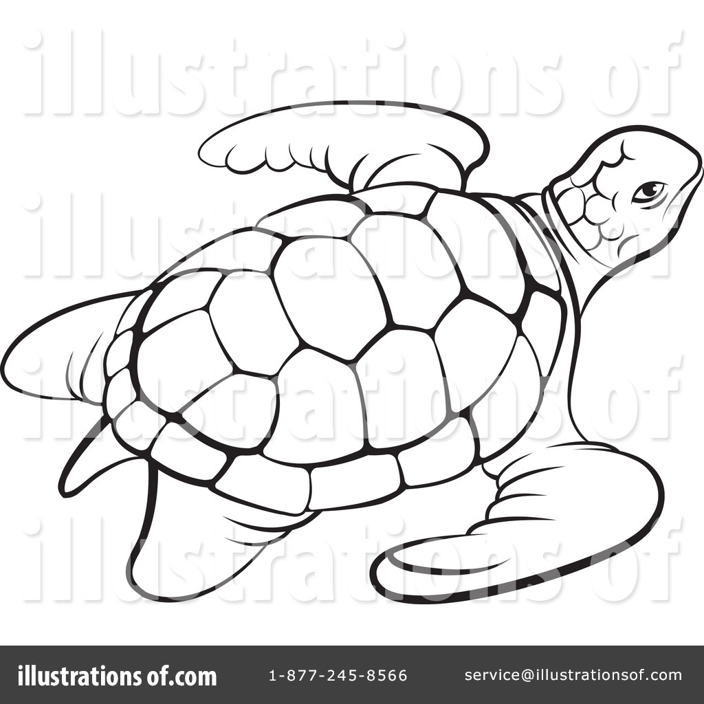 1024x1024 Turtle Clipart Line Drawing