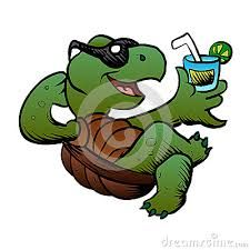 Turtle Cartoons Pictures