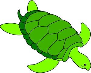 300x241 Cartoon Sea Turtle In Cartoons Clipart 2 Image 3