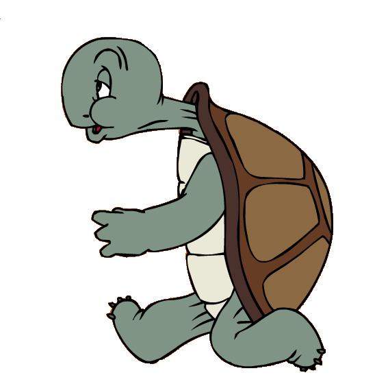 567x563 Cecil Turtle Warner Bros. Entertainment Wiki Fandom Powered By