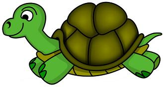 330x176 Clipart Turtles