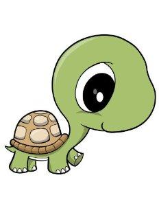 232x300 Cute Cartoon Turtles