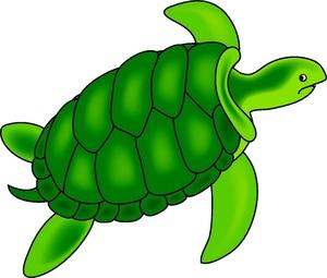 300x255 Sea Turtle Clipart Image