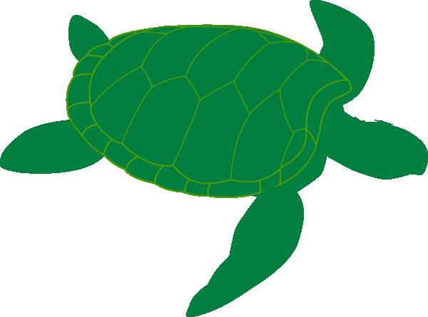 600x445 Marine Turtle Clip Art